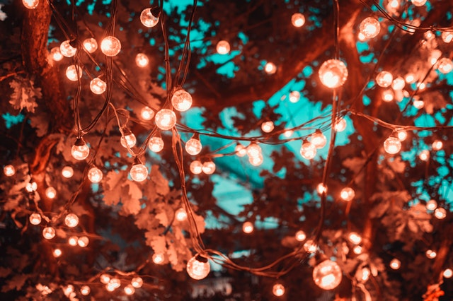 Fairy lights are the perfect addition to a garden party